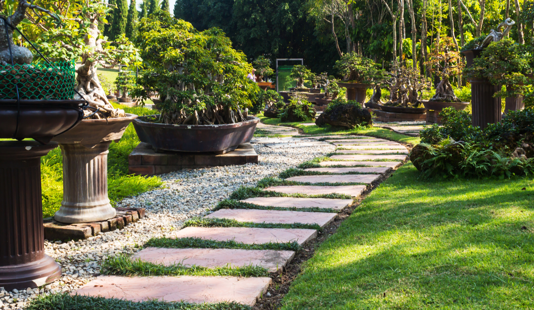 Important Things To Consider for Your Landscaping Project