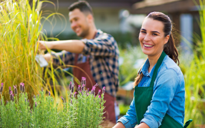 Things You Should Know Before Starting a Landscaping Project